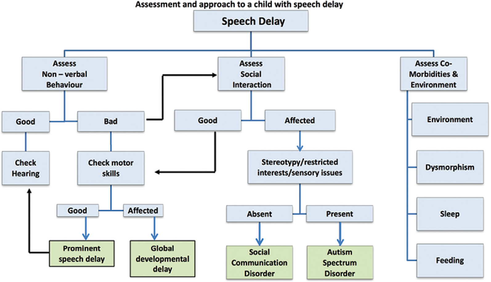 Figure 3: Approach to speech delay.