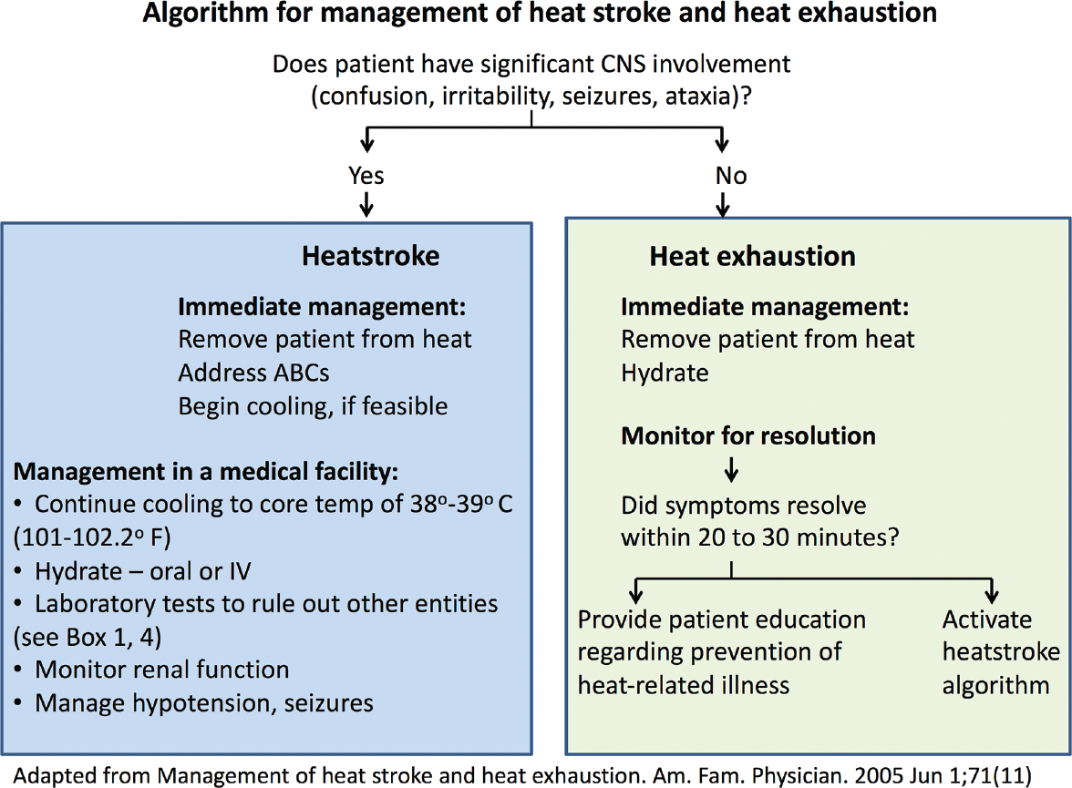 Heat Stroke And Heat Exhaustion An Update Gopinath K G Curr Med Issues