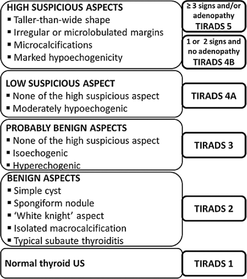 Figure 1: TIRADS – Thyroid imaging reporting and data system.